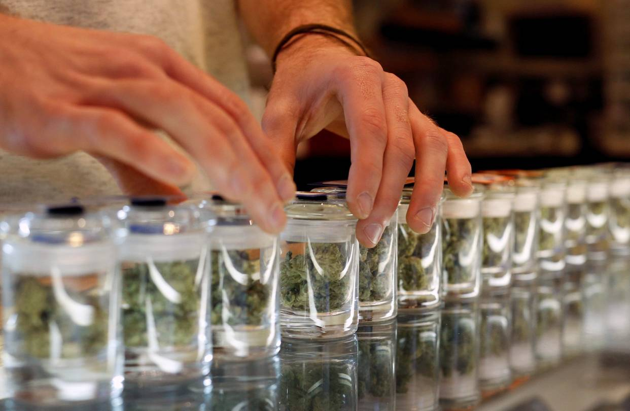 How Medical Cannabis is Differ From Recreational?